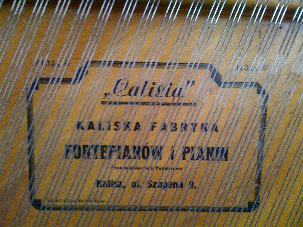 Calisia-1344-2-1-1024x768