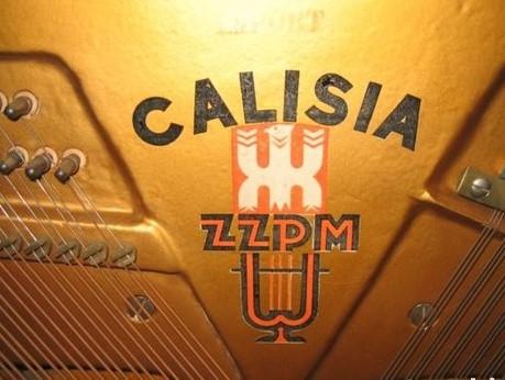Calisia-logo-ZZPM1-1