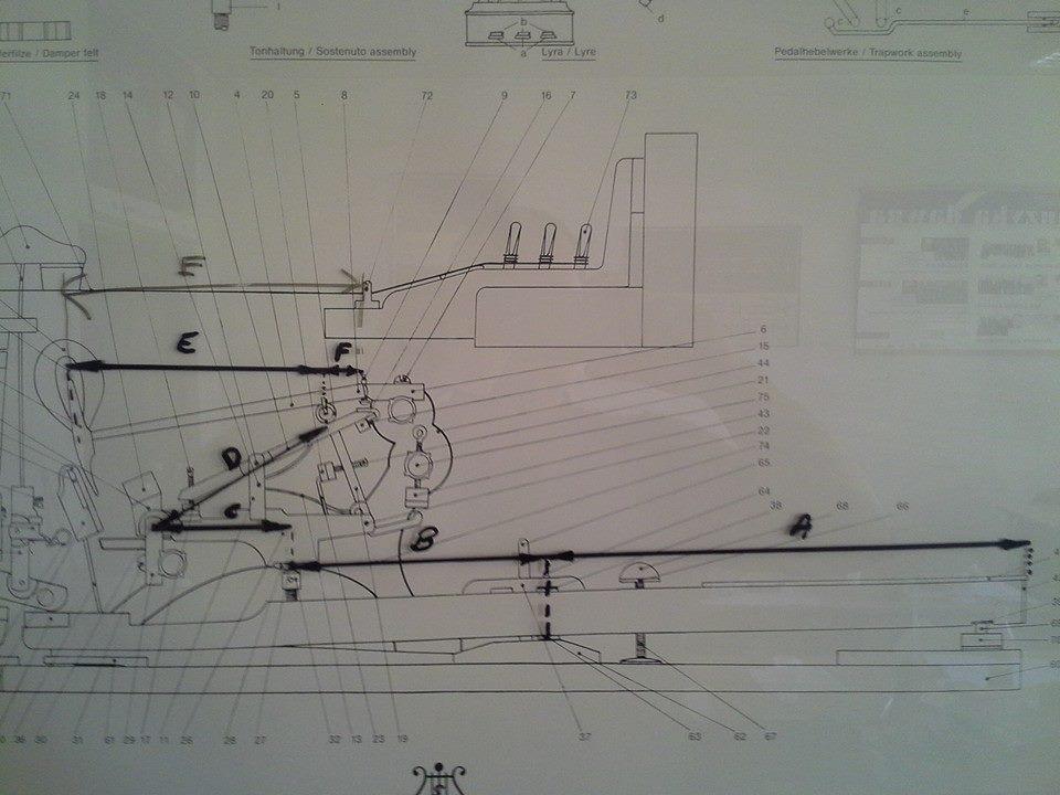 Tablica ze schematem mechanizmu fortepianowego/fot. Andrzej Włodarczyk